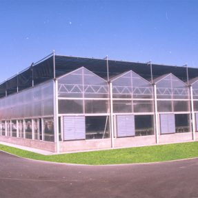 How much do you know about hydroponics greenhouses