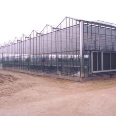 Tips before you will start your plastic greenhouse in future
