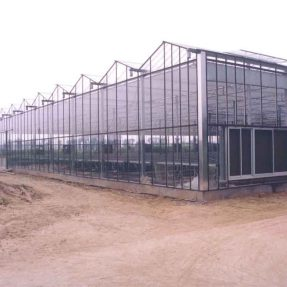 Small greenhouses are entering into home gardens today