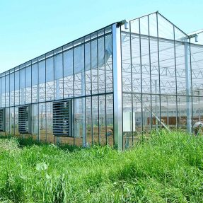 Multispan greenhouse features in applications